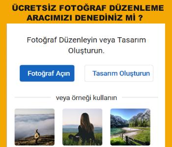 online fotoğraf düzenleme aracı